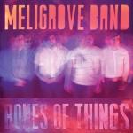 bones-of-things